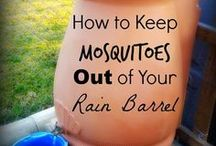 how to keep mosquitos out of rain barrel