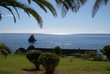 Arcipelago di Madeira / I luoghi incontaminati di questo fantastico arcipelago
