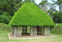 Green Building / Living cubby houses