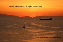 Quotes on Beautiful Nature Photos / Quotes on Beautiful Photos.