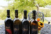 Central Coast Wineries