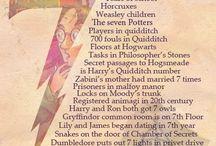 Harry Potter / The boy who lived.