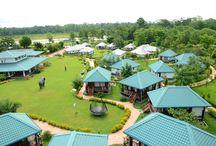 Murti Tourist Resort / Dhupjhora, P.O.: METELLY, Dist: Jalpaiguri, Pin: 735221 Phone: 98740 53292 E-mail:murtitouristresort2015@gmail.com