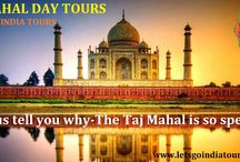 Taj Mahal is special? / Read blog on The Taj Mahal is so special : http://letsgoindiatours.blogspot.in/2016/02/let-us-tell-you-why-taj-mahal-is-so.html