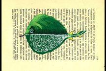 ilustrações peixes