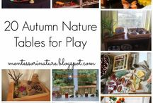hs: Waldorf Nature Table Ideas