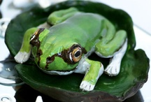 clay frogs