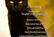 Spells and Blessings / Written spells, prayers, blessings, and chants.