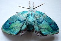 papillon art textile