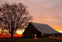 barns / by Karen Acton