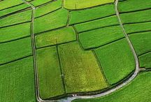paysages agricole