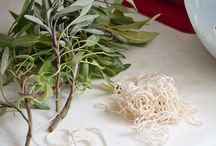 Herbs / Growing herbs, drying herbs, cooking with herbs. / by Phoebe Powell