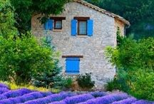 ♡♡♡  provence