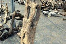 Proiecte driftwood