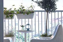 Beutiful balconies / Urban gardening