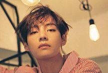 T A E H Y U N G / Kim Taehyung ( V ) of BTS. Taetae/Pabo. 301295