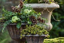Krukker med efterårskogler,grønt med mere / Krukkeudsmykning med plantet