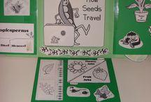 Connor Preschool  - Botany Unit Study
