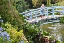 NZ House & Garden / by Diane Smith