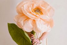 flori de hartie - tutorial - paper flower