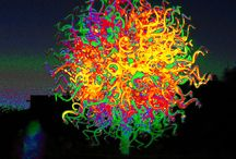 Chihuly Masterpieces / Chihuly Glass / by Gary MacDonald