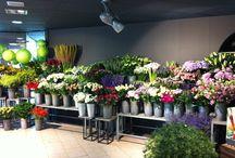Интерьер магазина цветов