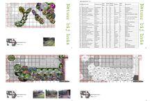 Collage beplantingsplan