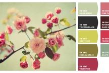 Interior Design Color Inspiration / by Allana Vazquez