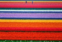 Life is colorful / Colors give energy to Life