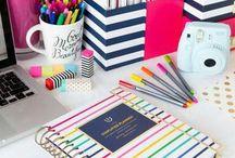 Organization and study