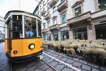 Travel inspiration - Milan