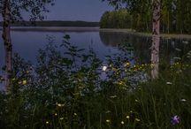 Finnish nature