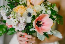 flower&plants