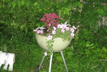 Garden : Creative containers / by A.J. Sarine