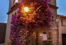 Bormes-les-Mimosas, Provence-Alpes-Côte d'Azur