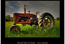 farmall tractor pics / by Lisa Hacker