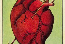 Corazón coraza