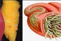 santé