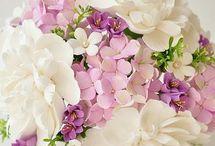 Flori tutorial
