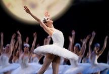 ballet art / バレエの芸術的な写真