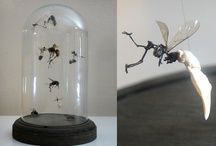 Contemporary Taxidermy Artists / A selection of some of my favourite artists who use the medium of taxidermy in their work
