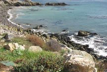 So Cal beach hikes / Beach hiking in L.A., Orange County and San Diego - sands, sea caves and more