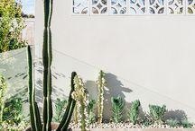 Pool gardens & paving