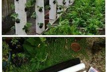Függőleges termesztés