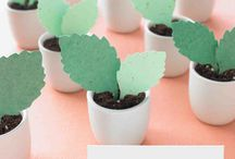 Farm to Table Favors