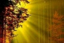 Východ slnka v prírode