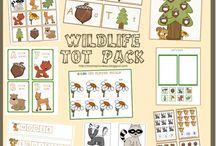 Education ~ Woodland Creatures
