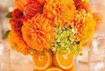 Blomsterdekorationer Bord