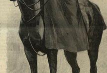 Vintage horse English