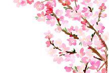 art > Yao Cheng